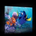 Obraz na plátne obdĺžnik - OB1568 - Hľadá sa Nemo