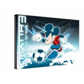 Obraz na plátne obdĺžnik - OB0314 - Mickey Mouse
