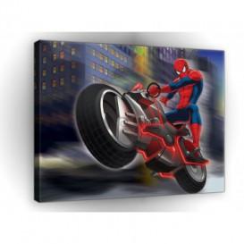 Obraz na plátne obdĺžnik - OB1646 - Spiderman