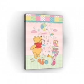 Obraz na plátne obdĺžnik - OB1661 - Medvedík Pu a kamaráti