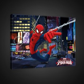 Obraz na plátne obdĺžník - OB1674 - Spiderman