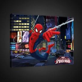 Obraz na plátne obdĺžnik - OB1674 - Spiderman