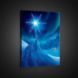 Obraz na plátne obdĺžnik - OB1771 - Elsa
