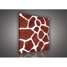 Obraz na plátne štvorec - OB1853 - Žirafia koža