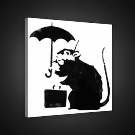 Obraz na plátne štvorec - OB1859 - Banksy: potkan
