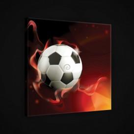 Obraz na plátne štvorec - OB1876 - Futbalová lopta