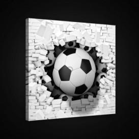 Obraz na plátne štvorec - OB1882 - Futbalová lopta