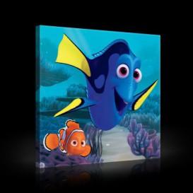 Obraz na plátne štvorec - OB2120 - Hľadá sa Nemo