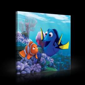 Obraz na plátne štvorec - OB2122 - Hľadá sa Nemo
