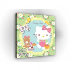 Obraz na plátne štvorec - OB2137 - Hello Kitty