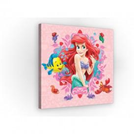 Obraz na plátne štvorec - OB2145 - Princezná - Ariel