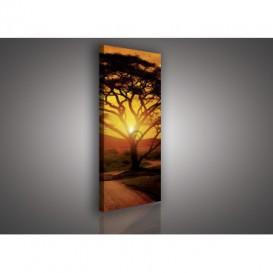 Obraz na plátne panoráma - OB2178 - Západ slnka