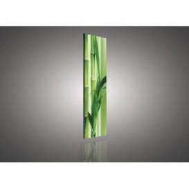 Obraz na plátne panoráma - OB2181 - Bambus