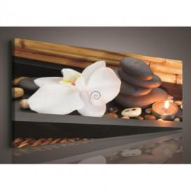Obraz na plátne panoráma - OB2185 - Biely kvet a kamienky