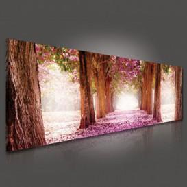 Obraz na plátne panoráma - OB2203 - Ružová alej