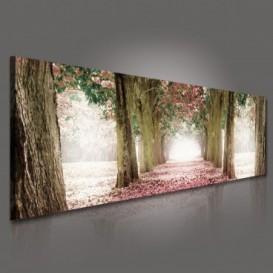Obraz na plátne panoráma - OB2204 - Ružová alej