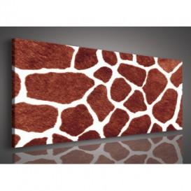 Obraz na plátne panoráma - OB2208 - Žirafia koža