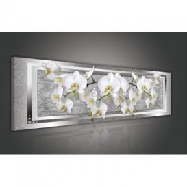Obraz na plátne panoráma - OB2209 - Biele orchidey