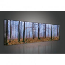 Obraz na plátne panoráma - OB2216 - Les