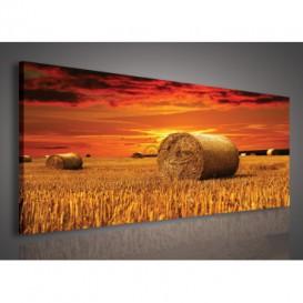 Obraz na plátne panoráma - OB2221 - Západ slnka