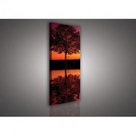 Obraz na plátne panoráma - OB2222 - Strom nad jazerom