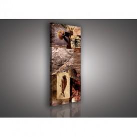 Obraz na plátne panoráma - OB2224 - Mozaika skamenelín