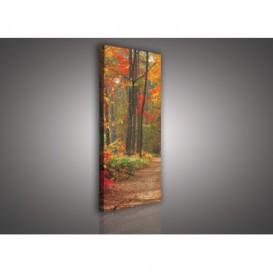 Obraz na plátne panoráma - OB2226 - Jesenný les