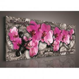 Obraz na plátne panoráma - OB2234 - Ružové orchidey
