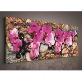 Obraz na plátne panoráma - OB2237 - Ružové orchidey