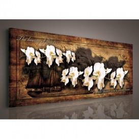 Obraz na plátne panoráma - OB2243 - Biele orchidey