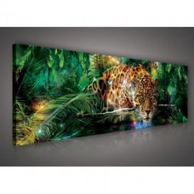 Obraz na plátne panoráma - OB2253 - Leopard