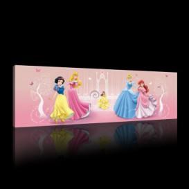 Obraz na plátne panoráma - OB2259 - Disney Princezné