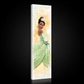 Obraz na plátne panoráma - OB2283 - Princezná Tiana