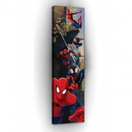 Obraz na plátne panoráma - OB2286 - Spiderman