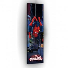 Obraz na plátne panoráma - OB2287 - Spiderman