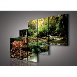 Obraz na plátne viacdielny - OB2326 - Jeleň v lese