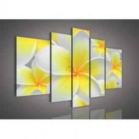 Obraz na plátne viacdielny - OB2327 - Žltobiely kvet