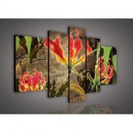 Obraz na plátne viacdielny - OB2506 - Červené kvety