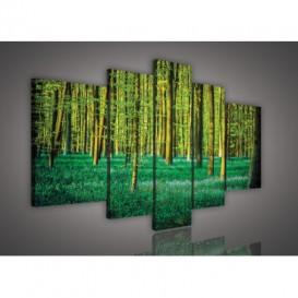 Obraz na plátne viacdielny - OB2541 - Zelený les