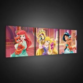Obraz na plátne viacdielny - OB2581 - Princezné