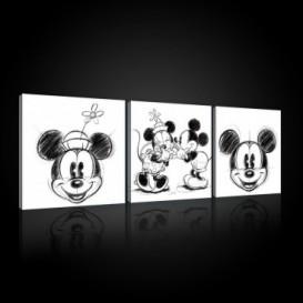 Obraz na plátne viacdielny - OB2630 - Mickey a Minnie Mouse