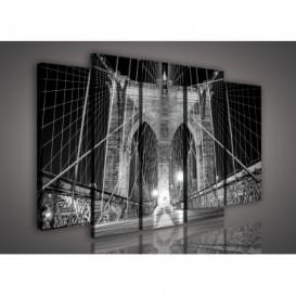 Obraz na plátne viacdielny - OB2681 - Most čierno biely