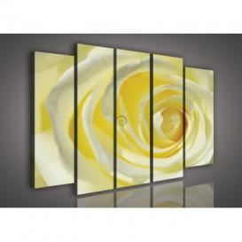 Obraz na plátne viacdielny - OB2689 - Žltá ruža