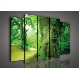 Obraz na plátne viacdielny - OB2719 - Zelený prales