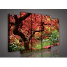 Obraz na plátne viacdielny - OB2726 - Jesenný les
