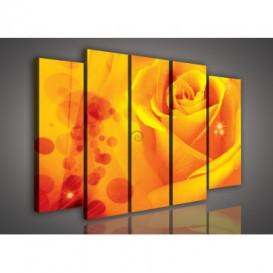 Obraz na plátne viacdielny - OB2786 - Oranžová ruža
