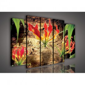 Obraz na plátne viacdielny - OB2856 - Červený kvet
