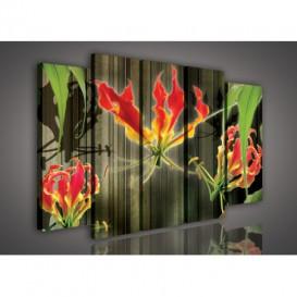 Obraz na plátne viacdielny - OB2863 - Abstraktný kvet