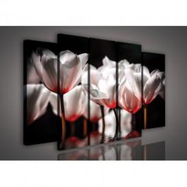 Obraz na plátne viacdielny - OB2902 - Červené kvety