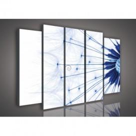 Obraz na plátne viacdielny - OB2906 - Púpava modrá
